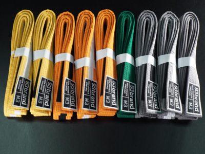 93br-children-belt